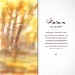 Vector card. Autumn composition with spider web and drops of dew or rain. Blurred misty background. Place for your text.