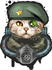 cute cat in military uniform, funny illustration