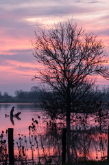 Sunrise on the Saône