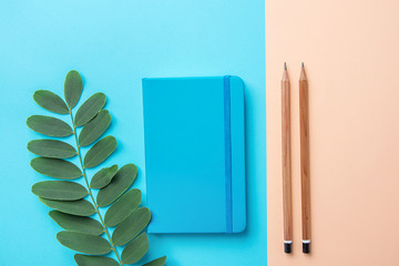 Writing Notepad Wood Pencils Green Plant Branch on Contrast Blue Peach Pink Pastel Color Background Combination. Business Education Routine Organization Planning Concept. Elegant Style Copy Space