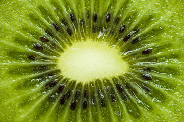 Kiwi texture, sliced juicy tropical fruit, exotic fresh vegetarian food, macro shot, natural abstract background