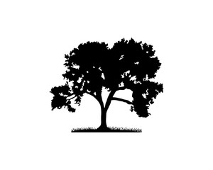 Black Vector Oak Tree Illustration Hand Drawing Logo Silhouette