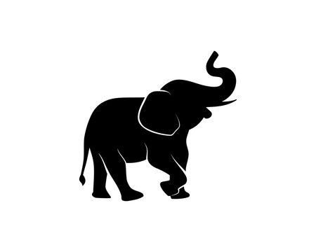 Black Elephant Illustration Animal on Zoo Silhouette Logo Vector