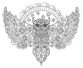the owl contour