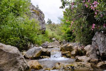 Temiz Su Kaynağı