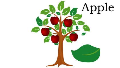 Apple  Trees vector element. vector green