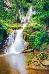 Forest and waterfall nature background