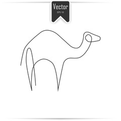 Camel one line. Camel icon in linear style