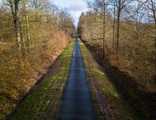 Aerial view of a straight narrow road in a forest in winter