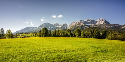saftige Frühlingswiese vor dem mächtigen Berg