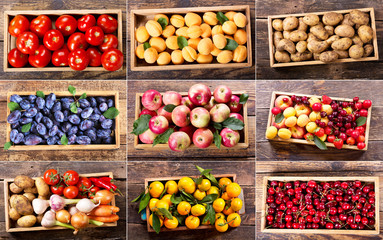 collage of various fruits and vegetables in wooden boxes Wall mural