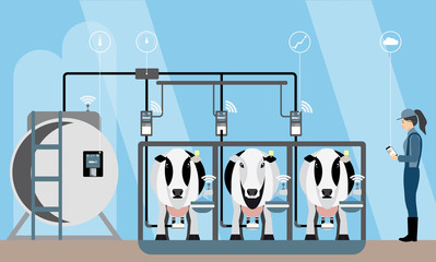 Internet of things on dairy farm. Herd management and automatic milking. Vector illustration