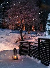 Lanterns in Christmas snowfall garden
