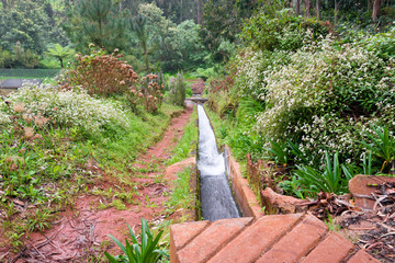 Levada, trails and surroundings on foggy, misty and rainy days. Leavdas are irrigation channels specific to the island of Madeira.