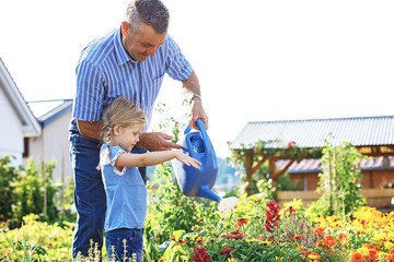 Watering flowers in the garden