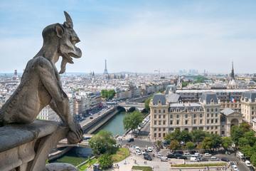 Notre Dame Gargoyle und Skyline von Paris