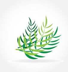 Tropical palm leafs vector