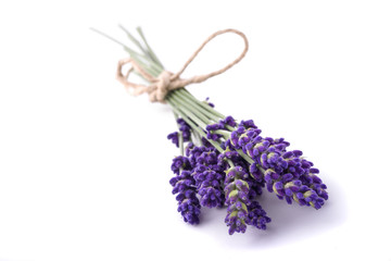 Lavender flowers bunch tied