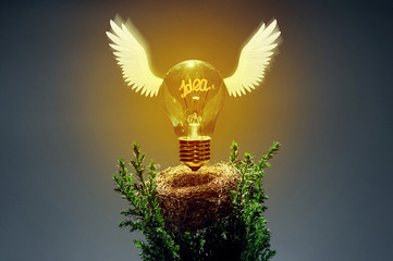 "Image of an incandescent lamp taking off from its nest. The filament forms the word ""idea"". Concept of the new ideas, discoveries and solutions."