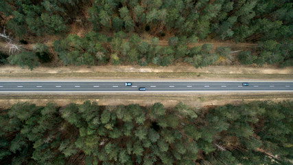 Asphalt road and autumn forest from a bird's eye view. Aerial photography of nature