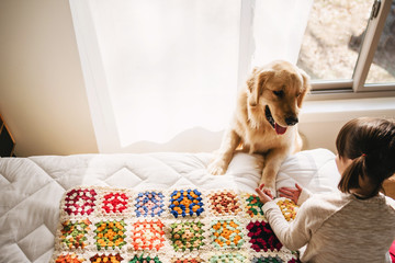 Girl sitting on her bed playing with a golden retriever dog