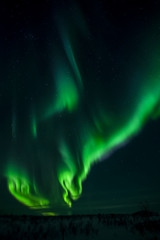 The northern lights - Russia