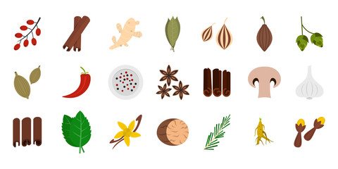 Spices icon set, flat style