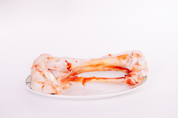 bone lies on a plate on a white background