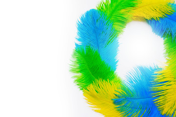 The feathers of birds are green, yellow and blue. White background. Feathers for the Brazilian carnival costume.