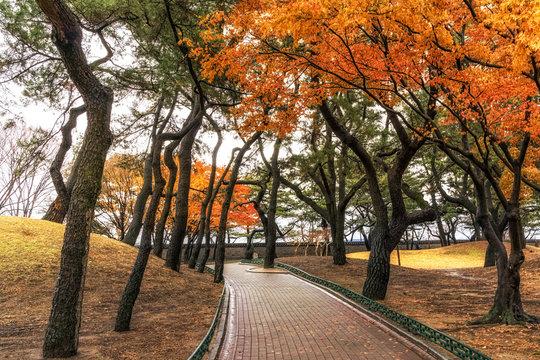 royal mounds in daereungwon