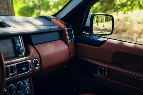 Luxury car leather interior, green spring summer forest