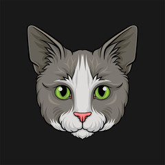 Head of grey cat, face of pet animal hand drawn vector Illustration
