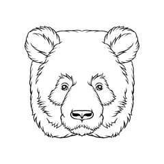Black and white sketch of panda bears head, face of wild animal hand drawn vector Illustration