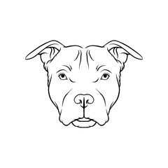 Black and white sketch of bulldog dogs head, face of pet animal hand drawn vector Illustration