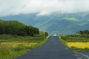 way to the nature, nature road