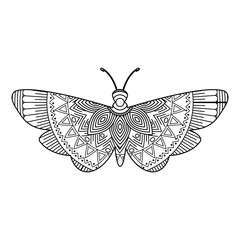 hand drawn for adult coloring pages with moth bug zentangle monochrome sketch vector illustration