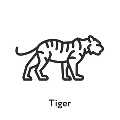 Wild Bengal Tiger Standing Minimal Flat Line Outline Stroke Icon