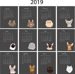 calendar with cats in 2019