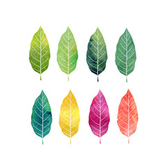 watercolor set of tree leaves