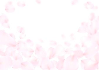 花びら ピンク 桜 バラ