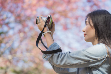 The photographer woman take a sakura cheery blossom photo