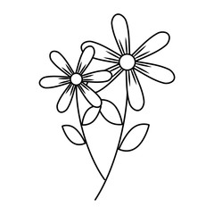 two flowers decorative spring image vector illustration outline design