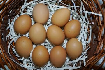 eggs in basket. eggs in nest