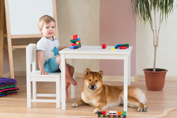 Little child girl and small cute dog in the living room