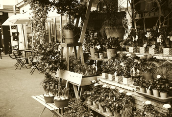 Outdoor flower shop on Parisian street. Cafe tables and bicycle at background. Paris (France). Sepia.
