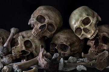 Pile of skulls and bones on black background