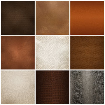Leather Texture Samples Realistic Set