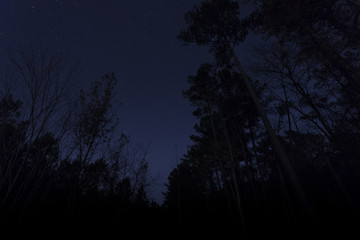 North Carolina night sky