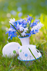 Blausternchen mit Ostereiern