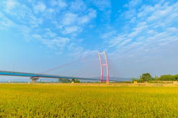Suspension bridge in chubei, Taiwan
